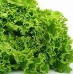 полезные свойства листьев салата