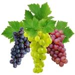 Чем полезен виноград