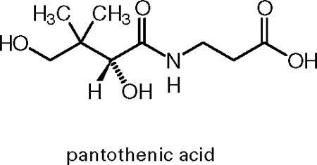 Взаимодействие витамина В5 с прочими веществами