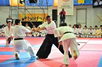 Школы боевых искусств в России