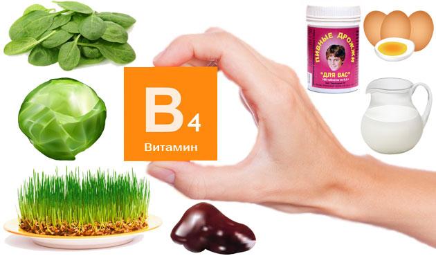 Витамин В4