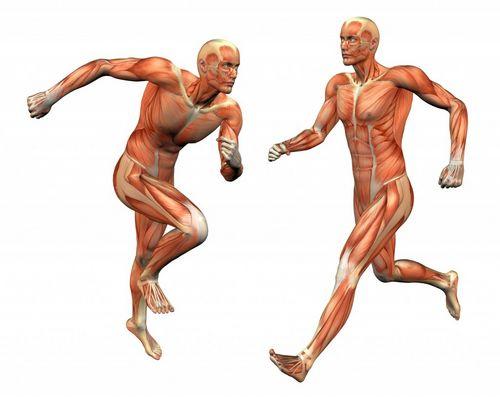 Витамины на сушке тела
