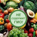 ГМО: вред или польза