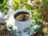 О чистке кишечника сенной в домашних условиях
