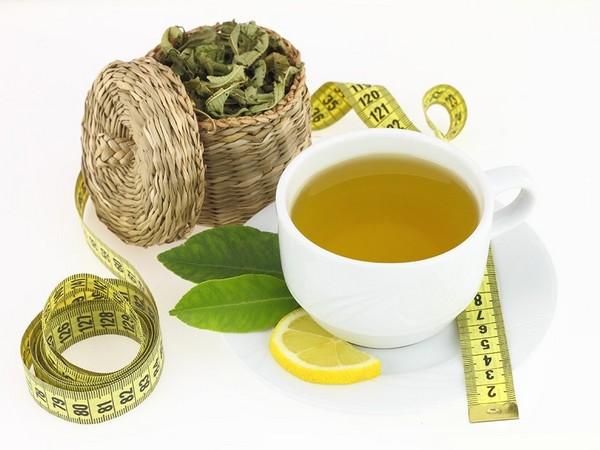 чай турбослим для похудения отзывы