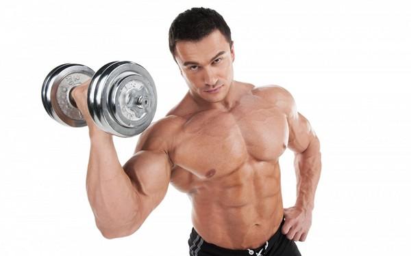Комплекс упражнений в тренажёрном зале: советы для начинающих
