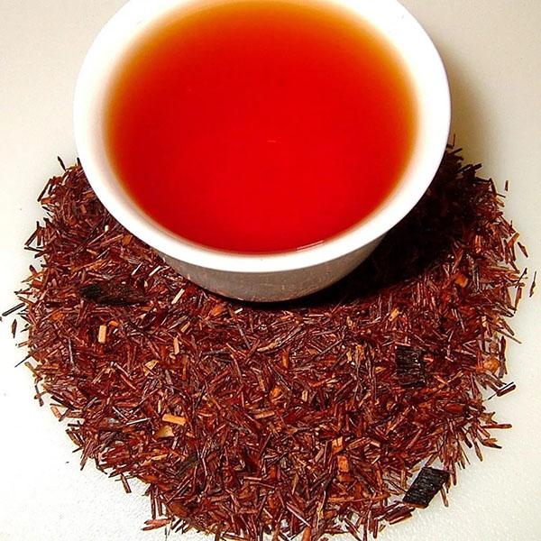 Чай ройбуш: полезные свойства и противопоказания