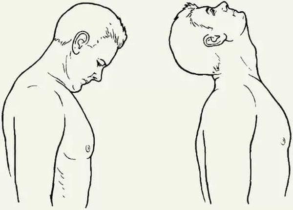 качать шею разминка