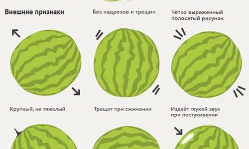 99413a8db72c Калорийность арбуза на 100 гр. 🍉 польза и вред при похудении