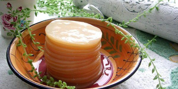 Чайный гриб: польза или вред