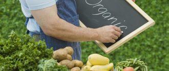 Органические продукты – польза для здоровья