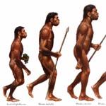 Ученые поведали о диете первобытных людей