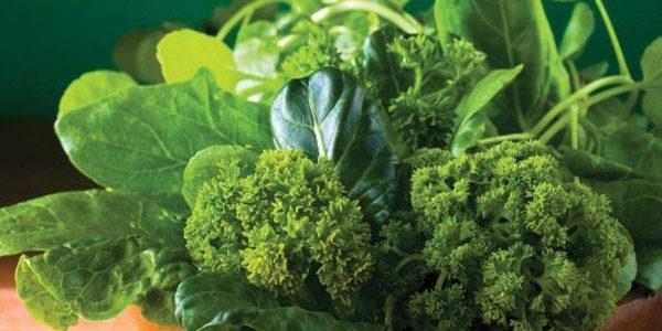 Зеленая диета для похудения: отзывы худеющих, меню на неделю