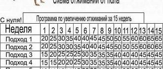 таблица 30 дней отжиманий для девушек