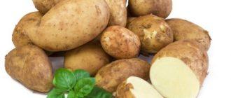 Вареная и сырая картошка: вред и польза