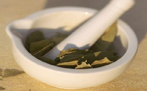 Очищение суставов лавровым листом