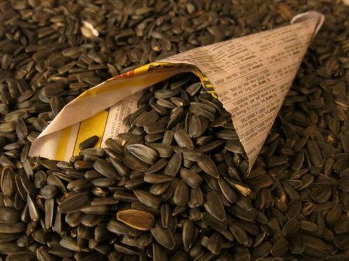 Полезные свойства подсолнечных и тыквенных семечек