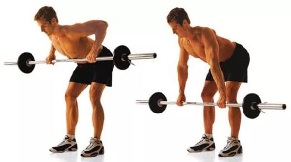 Упражнения на спину в тренажерном зале