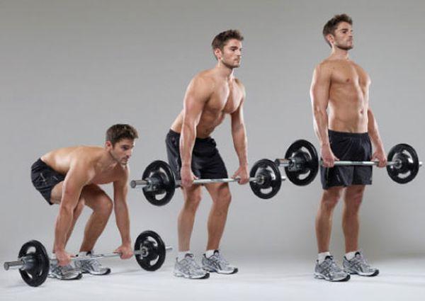 упражнение становая тяга со штангой