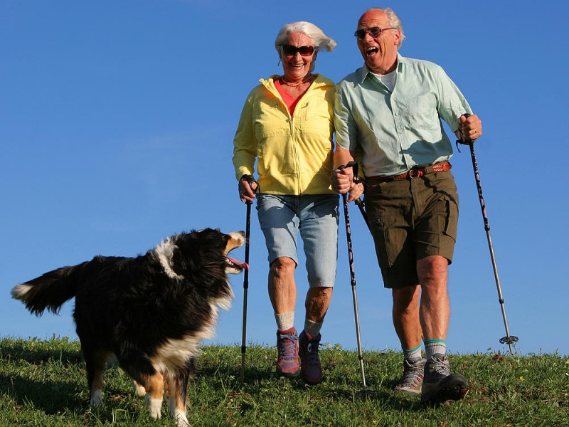 Скандинавская ходьба с палками для пожилых людей