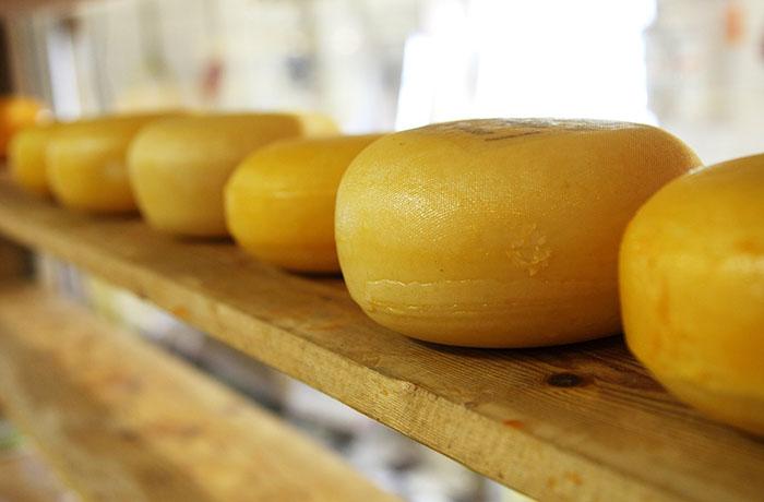 Какой сыр можно и нужно есть диабетикам