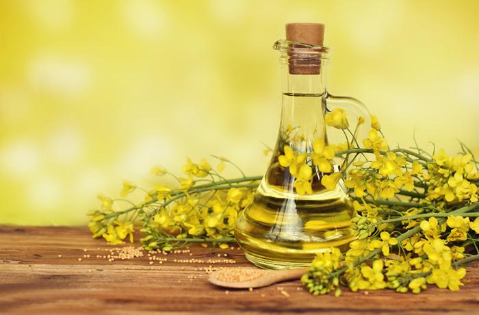Рапсовое масло: где используют, польза и возможный вред для здоровья