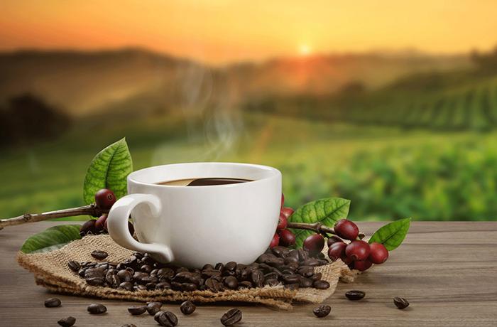 Какова калорийность кофе: польза и вред для организма, состав, БЖУ на 100 грамм