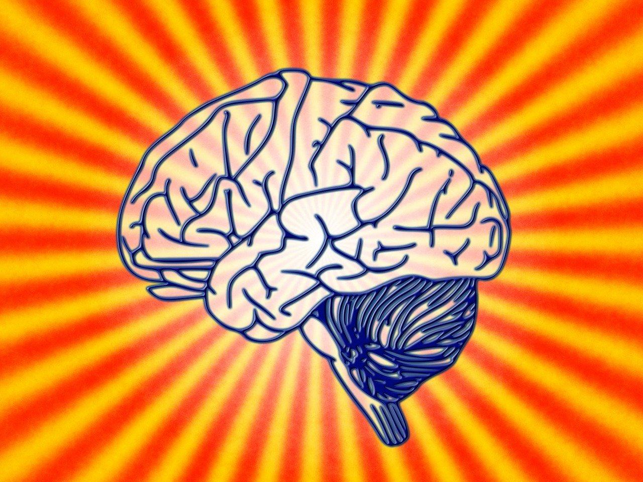Тест накругозор: Разминка для мозга из15сложных вопросов обо всём насвете