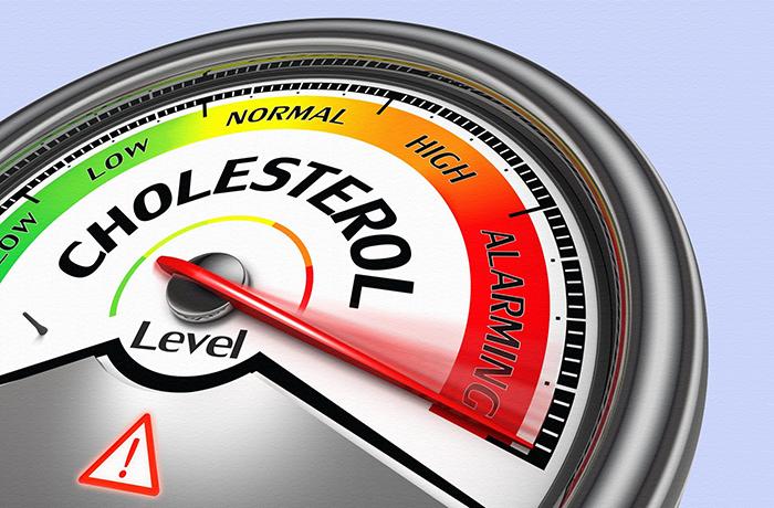 Вся правда о холестерине: стоит ли его бояться?
